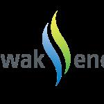 Sarawak Energy Scholarship Programme